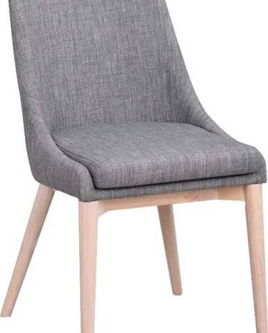 Šedá polstrovaná jídelní židle se světle hnědými nohami Rowico Bea