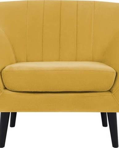 Žlutá sametové křeslo Mazzini Sofas Toscane