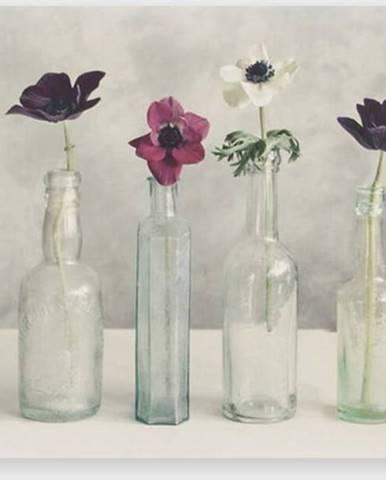 Obraz Graham & Brown Floral Row,70x50cm