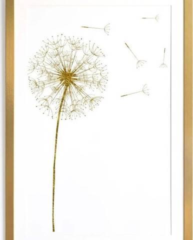 Obraz Surdic Diente de Leon, 40 x 60 cm