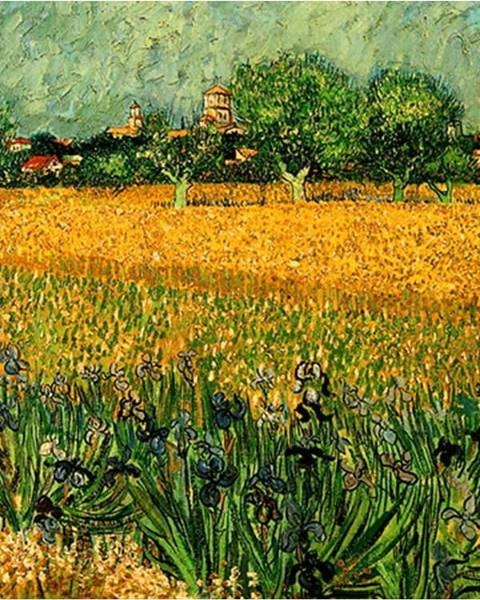 Fedkolor Reprodukce obrazu Vincenta van Gogha - View of arles with irises in the foreground, 40 x 30 cm
