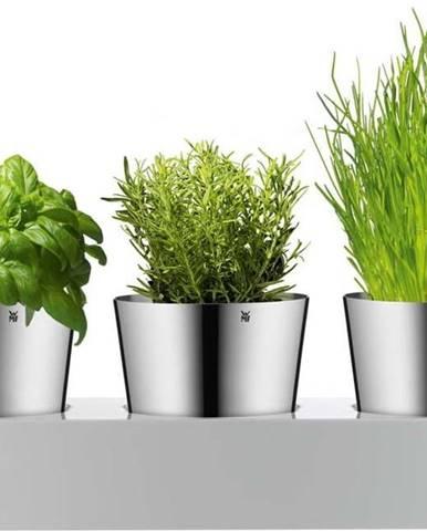 Sada 3 nerezových květináčů na bylinky WMF Gourmet