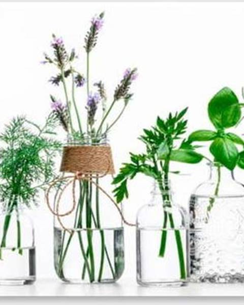 Styler Obraz Styler Glasspik Herbs, 30 x 80 cm