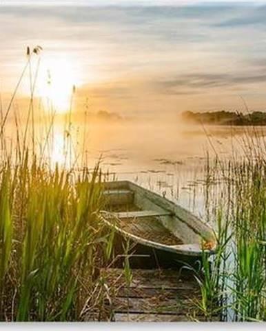 Obraz Styler Boat In The Grass, 125 x 50 cm