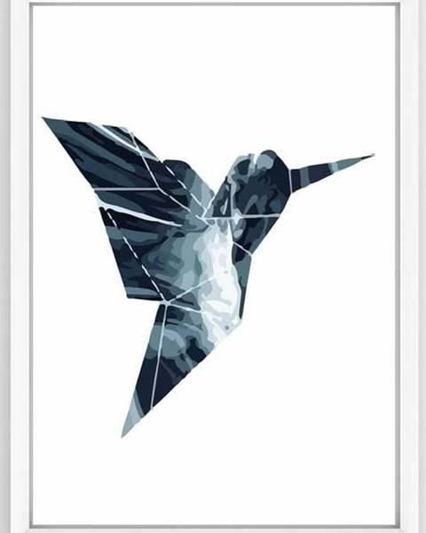 Piacenza Art Obraz Piacenza Art Not Dove, 30 x 20 cm