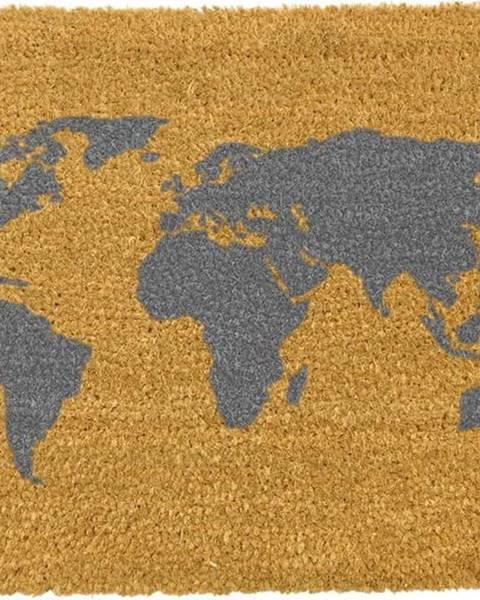 Artsy Doormats Rohožka z přírodního kokosového vlákna Artsy Doormats World Map,40x60cm