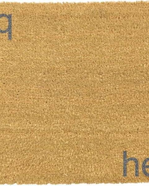 Artsy Doormats Šedá rohožka z přírodního kokosového vlákna Artsy Doormats Hello,Bye, 40x60cm