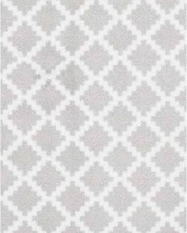 Světle šedý běhoun Zala Living Magic Elegance, 50x150cm