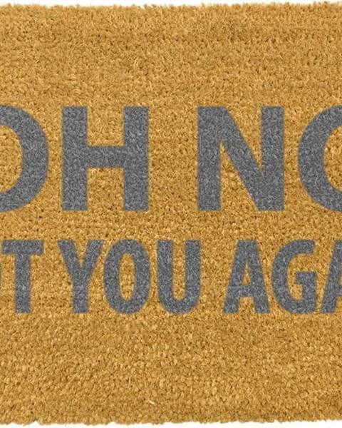 Artsy Doormats Rohožka z přírodního kokosového vlákna Artsy Doormats Oh No Not You Again Grey,40x60cm
