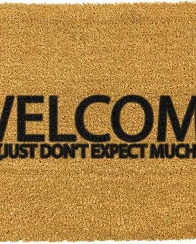 Rohožka z přírodního kokosového vlákna Artsy Doormats Welcome Don't Expect Much,40x60cm