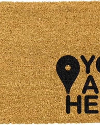 Černá rohožka z přírodního kokosového vlákna Artsy Doormats You Are,40x60cm