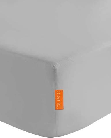 Šedé elastické prostěradlo z čisté bavlny Happy Friday Basic, 90x 200cm