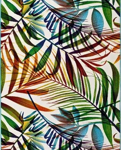 Koberec Universal Maloza Colors, 160x230cm