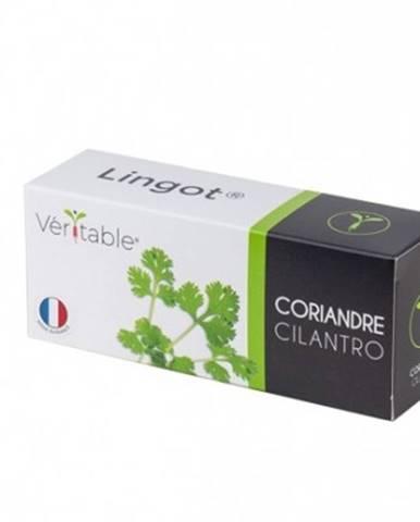 Bio koriandr pro smart květináče véritable koriandr003