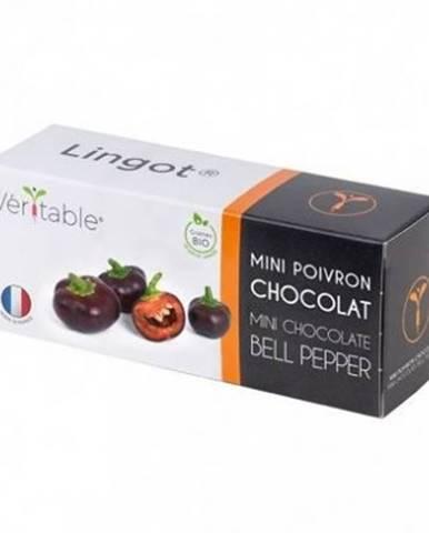 Bio mini čokoládová paprika pro smart květináče véritable