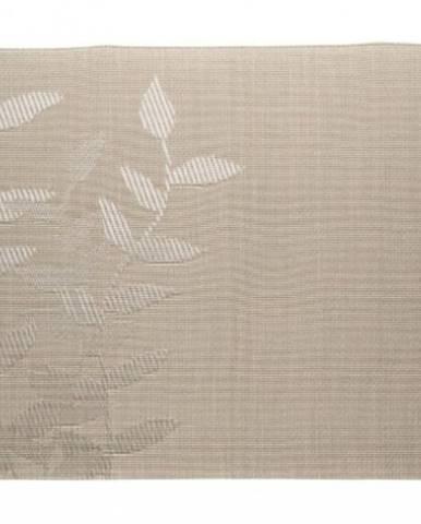 Prostírání banquet leaf nature, 45x30cm