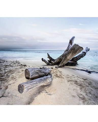 Monee OBRAZ NA SKLE, krajina & příroda, pláž & moře, 120/80 cm - vícebarevná