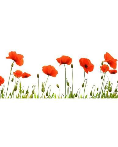 Monee OBRAZ SKLENĚNÝ, květiny, 125/50 cm - vícebarevná