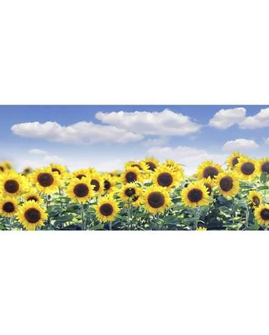 OBRAZ NA SKLE, květiny, 30/80 cm - černá, bílá