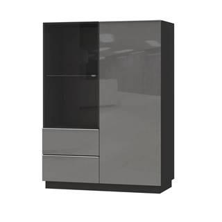 HELIO TYP 44 vitrína 2D2S, černá/šedé sklo