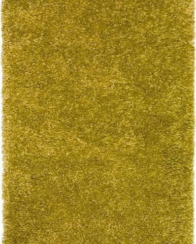 Zelený koberec Universal Aqua Liso, 160x230cm
