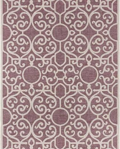 Fialovo-béžový venkovní koberec Bougari Nebo, 200 x 290 cm