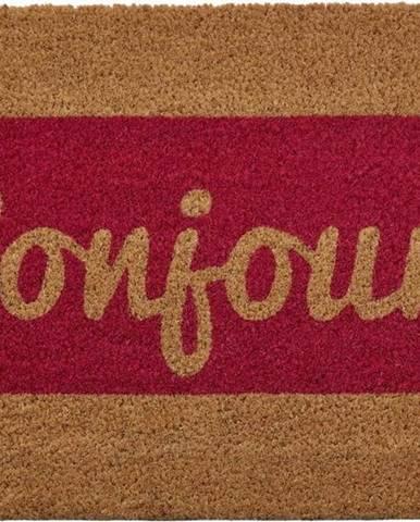 Rohožka z přírodního kokosového vlákna Premier Housewares Bonjour,40 x60cm