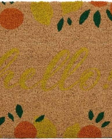 Rohožka z přírodního kokosového vlákna Premier Housewares La Dolce Frutta,40 x60cm