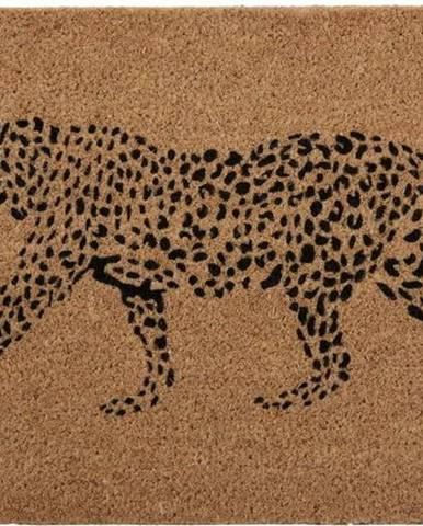 Rohožka z přírodního kokosového vlákna Premier Housewares Leopard,40 x60cm