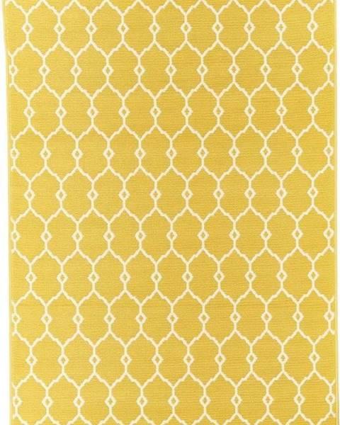 Floorita Žlutý venkovní koberec Floorita Trellis, 160 x 230 cm