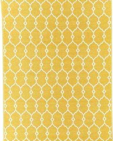 Žlutý venkovní koberec Floorita Trellis, 133 x 190 cm