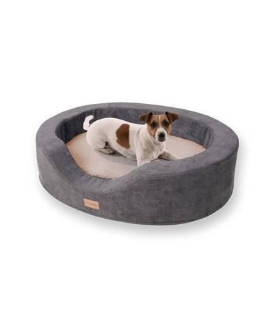 Brunolie Lotte, pelech pro psy, polštář pro psy, pratelný, ortopedický, protiskluzový, prodyšná paměťová pěna, velikost M (80 x 20 x 60 cm)