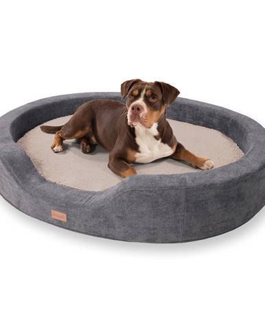 Brunolie Lotte, pelech pro psy, polštář pro psy, pratelný, ortopedický, protiskluzový, prodyšná paměťová pěna, velikost XL (120 x 20 x 100 cm)