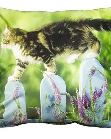 Povlak na polštář 40x40 foto kočka na plotě
