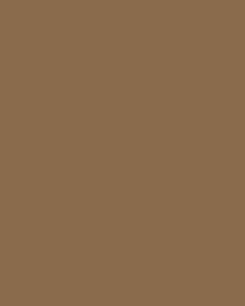 BAUMIT Silikonová omítka Baumit Startop 1,5 mm 25 kg – odstín 0151