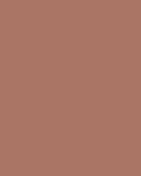 BAUMIT Silikonová omítka Baumit Startop 1,5 mm 25 kg – odstín 0403