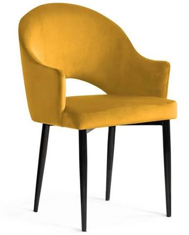 Židle Goda Medová Barva