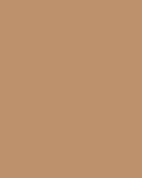 BAUMIT Silikonová omítka Baumit Startop 2,0 mm 25 kg – odstín 0343