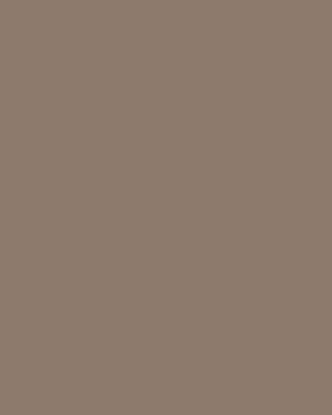 BAUMIT Silikonová omítka Baumit Startop 2,0 mm 25 kg – odstín 0393