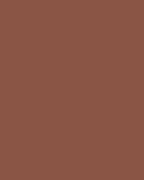 BAUMIT Silikonová omítka Baumit Startop 2,0 mm 25 kg – odstín 0401