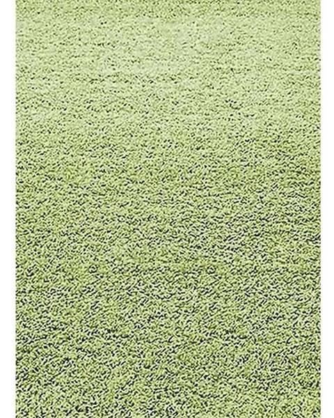 BAUMAX Koberec Shaggy Dream 1,33/1,9 5229 Zelený