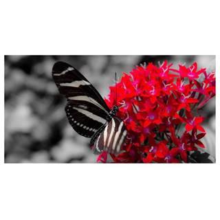 Dekor skleněný - motýl 30/60
