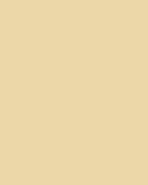 BAUMIT Silikonová omítka Baumit Startop 3,0 mm 25 kg – odstín 0136