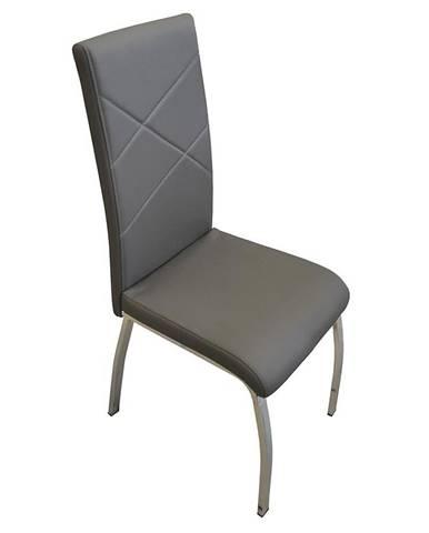 Židle Komfort Šedá