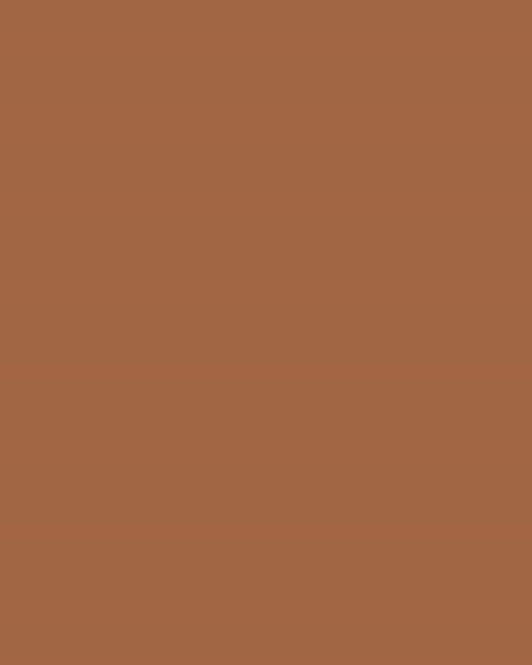 BAUMIT Silikonová omítka Baumit Startop 3,0 mm 25 kg – odstín 0331