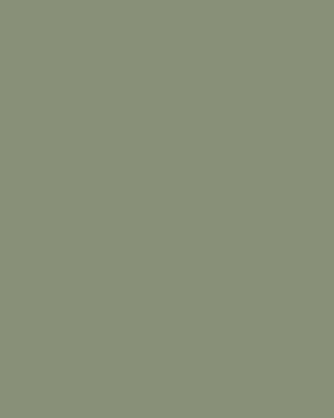 BAUMIT Silikonová omítka Baumit Startop 3,0 mm 25 kg – odstín 1023