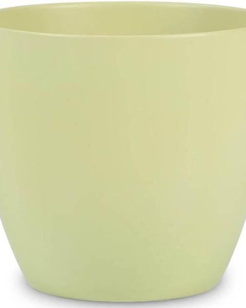 BAUMAX Obal na květináč keramický scheurich 920, ø25cm, barva světle zelená