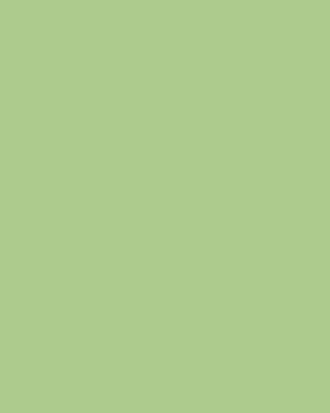BAUMIT Akrylová omítka Baumit Puratop 1,5 mm 25 kg – odstín 1064