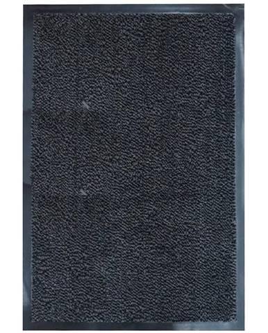 Rohožka Tiger 80x120cm Antracyt Cm3004