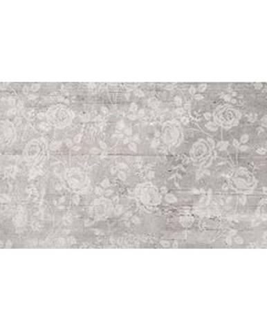 Dekor Antica grey rosse 25/50